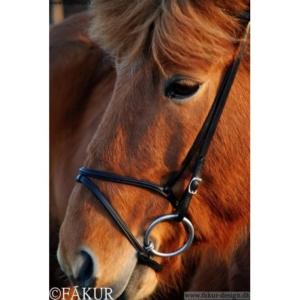 Nordic Horse engl. komb. Reithalfter elegant, schwarz