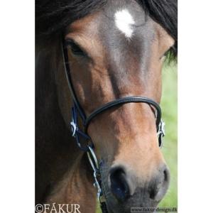 engl. Reithalfter Nordic Horse elegant 6mm