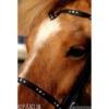 """Kopfstück Nordic Horse  """"Julia"""" V-Form mit weißen Steinen"""
