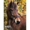 Kopfstück Nordic Horse 15, schwarz