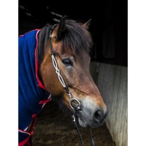 Kopfstück Nordic Horse 1 Wellen mit Spitze (ohne Stirnriemen)