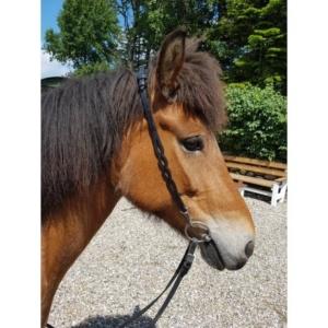 Kopfstück (Nackenriemen) Nordic Horse 137 weiches Nackenpolster