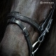 Nordic Horse engl.komb. Reithalfter 399 mit Spitzen u. einzelnen Steinen
